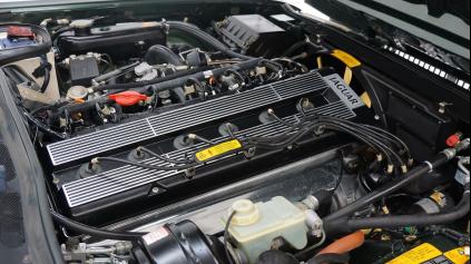 Jaguar šesťvalec je v bežných modeloch takmer vyhynutý druh
