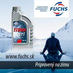 Fuchs zima 2018